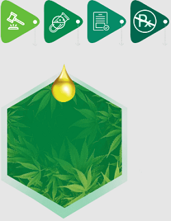 Bioneo Farms CBD Oil